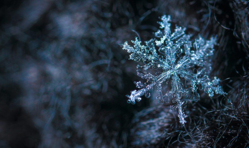 連日の寒さ、冬も本番!