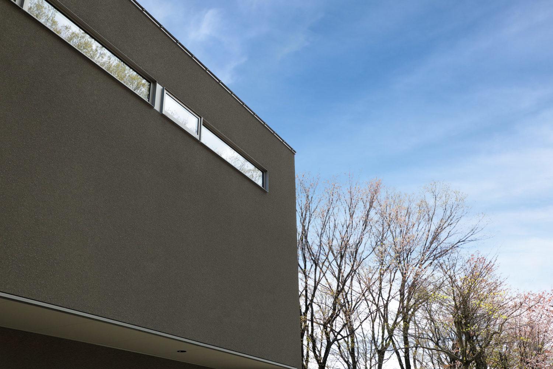 昼は廻りの生い茂る木が反射する窓も楽しめる